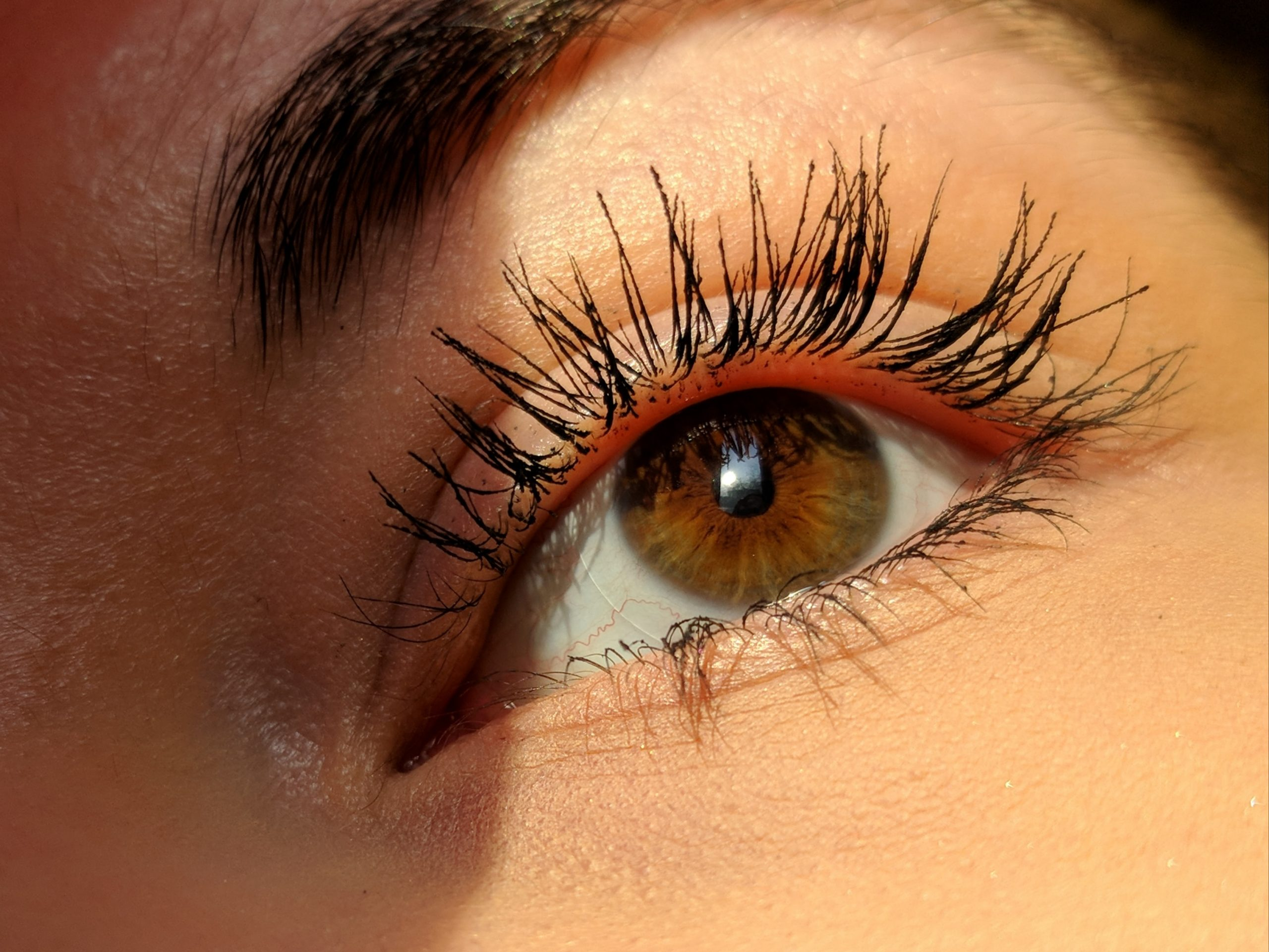 Our Favorite Must-Have Mascaras